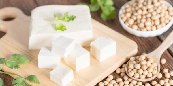 Resultado de imagem para tofu
